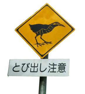 沖縄の標識 とびだし注意