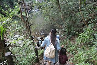 普久川の滝 トレッキング